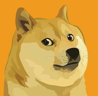 Shiba Uni Dogecoin meme